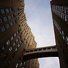 The Metropolitan Life Building Skyway Bridge  by Vivienne Gucwa