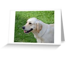 Cloud the Lab Greeting Card