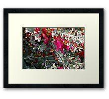 Honey Bee meets Native Flower Framed Print