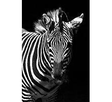 Striped BW Photographic Print