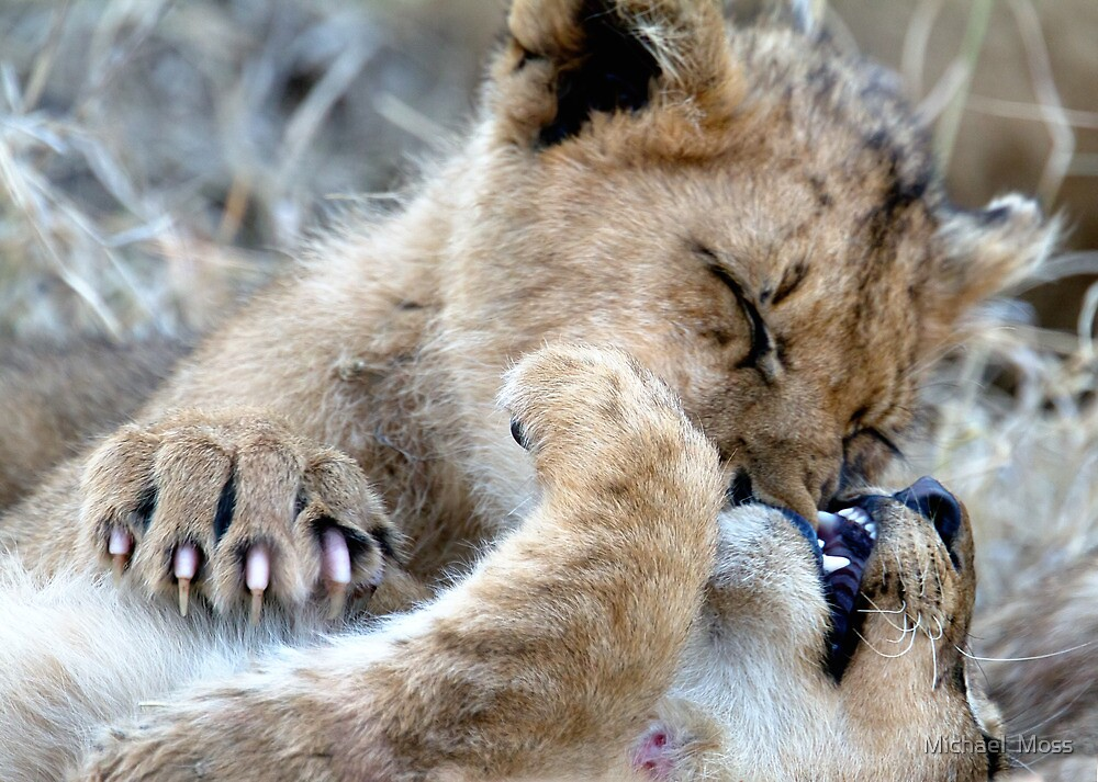 Mom, He Is Biting My Nose Again! by Michael  Moss