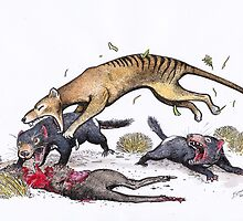 Thylacine attacking the devil by SnakeArtist