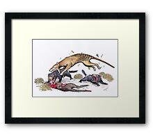 Thylacine attacking the devil Framed Print