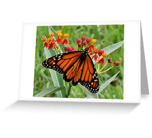 Viceroy Luncheon  Greeting Card