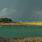 Baie de Morlaix by jean-jean