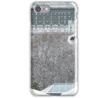 Central Park In Snow iPhone Case/Skin