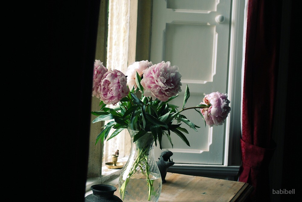 Flowers in the Window by Claire Dimond