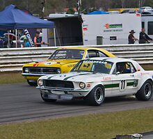 Geoghegan Stang and Beechey Monaro by TGrowden