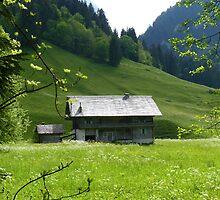 """""""Meadow View""""  Champery, Switzerland by Anita  Fletcher"""