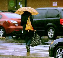 Rainy Day Jaywalker by Lee Donavon Hardy