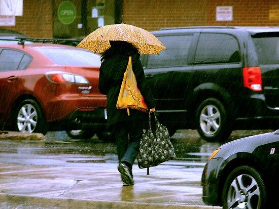 Rainy Day Jaywalker by Lee Donavon Hardy