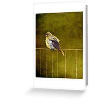 Golden Girl Greeting Card