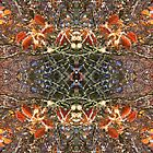 Kaleidoscope - Tree Series Autumnal by Circe Lucas