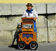 Budapest, Hungary, Organ Grinder, 2011, August by Lyz48