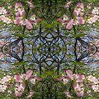 Kaleidoscopic Trees by Circe Lucas