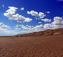 Dunes by Reptilefreak