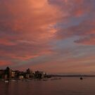 Sydney Harbour  by CleoJK