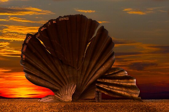 Scallop Sunrise at Aldeburgh by Darren Burroughs