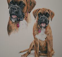 Lola, Boxer puppy montage by Stephanie Greaves