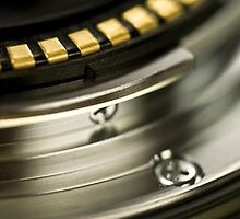 Lens Macro by Chad Ely