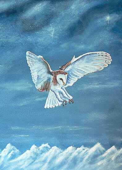 Barn Owl by Dan Wagner