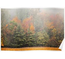 Cataloochee Valley Colors Poster