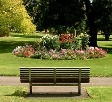 Park Bench by Chris Chalk