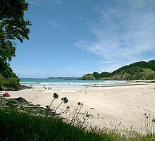 North Whananaki beach - New Zealand. by Roy  Massicks
