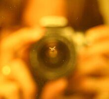 Capturing The Fly by Nik Korba