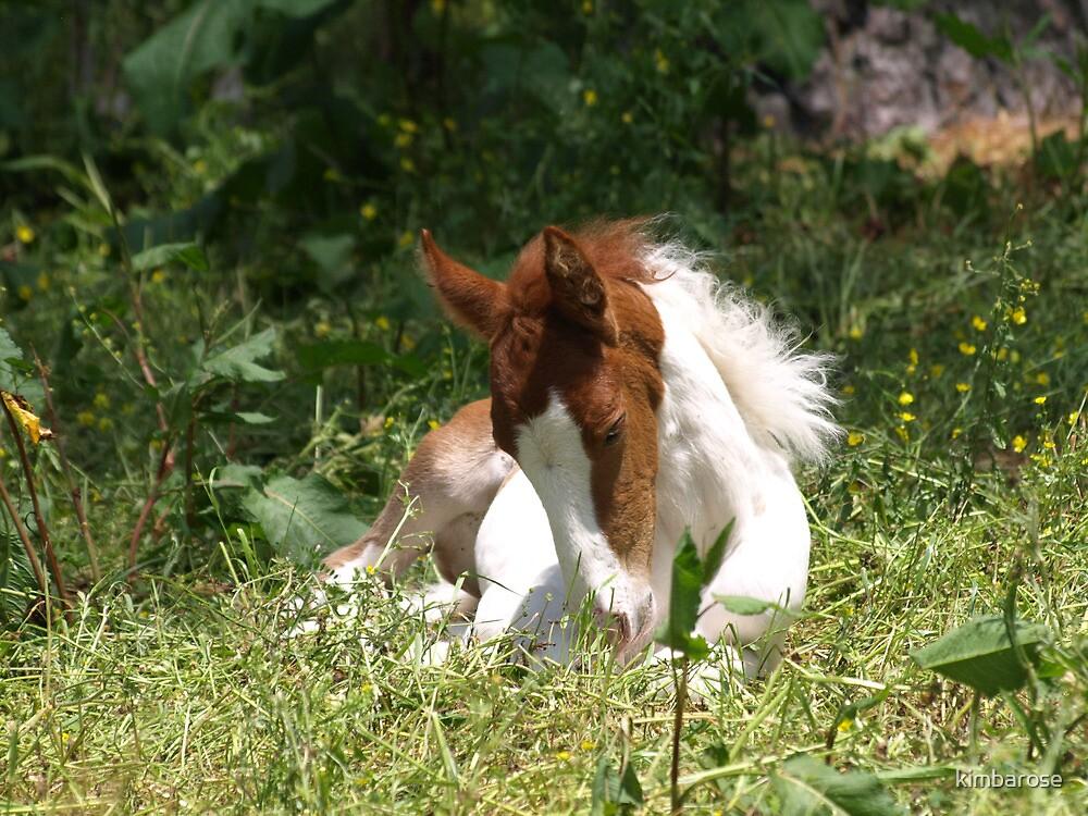 Yum Grass by kimbarose