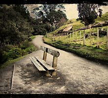 Base track, Mt Mauao. Tauranga, New Zealand. by Lynne Haselden