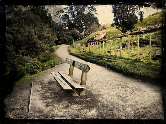 Base track, Mt Mauao. Tauranga, New Zealand. by Lynne Haselden