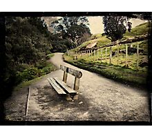 Base track, Mt Mauao. Tauranga, New Zealand. Photographic Print