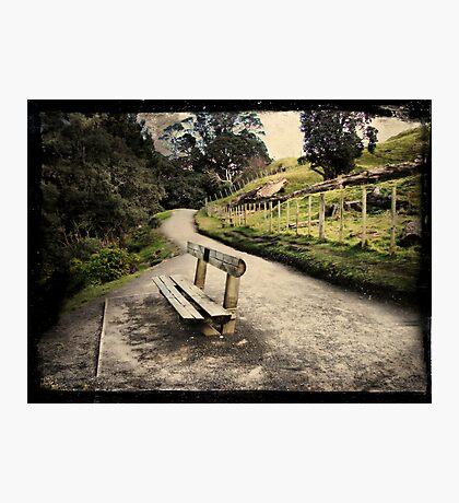 Base track, Mt Mauao. Tauranga, New Zealand. Photographic Print