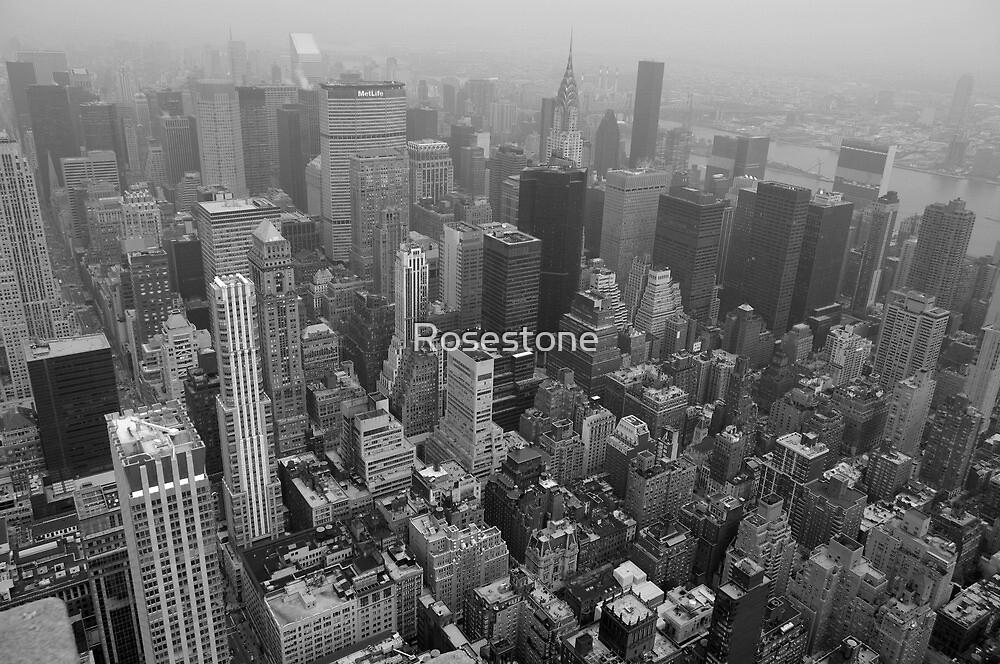 New York NY by Rosestone