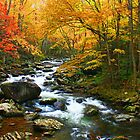 MIDDLE PRONG LITTLE RIVER,TREMONT by Chuck Wickham