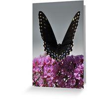 V Wings Greeting Card