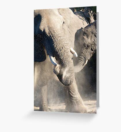Dust Bath Time Greeting Card