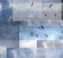 Abstract Composition With Clouds and Birds – September 8, 2011 by Ivana Redwine