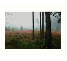 Forest meadow in mist Art Print