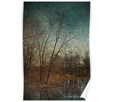 Barren Trees Near the End of Winter Poster