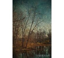 Barren Trees Near the End of Winter Photographic Print