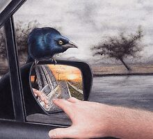 Reflections by Lars Furtwaengler