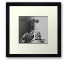Night Crossing Framed Print