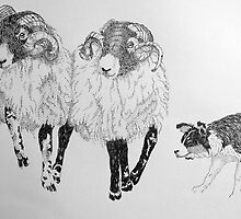 Rounding Up Tups by Sue Nichol