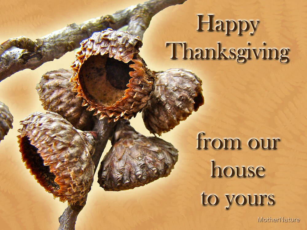 Thanksgiving Card - Where Acorns Come From by MotherNature