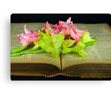God's Old Book Canvas Print