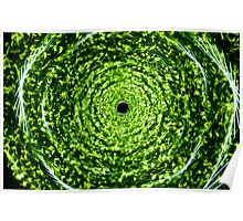 Forest whirlpool - Green light painting physiogram  Poster