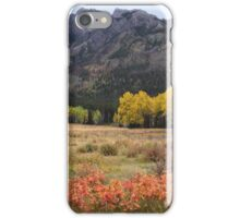 Autumnal colours iPhone Case/Skin