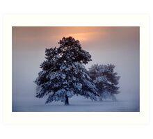 Ashdown Forrest Snow Scene Art Print